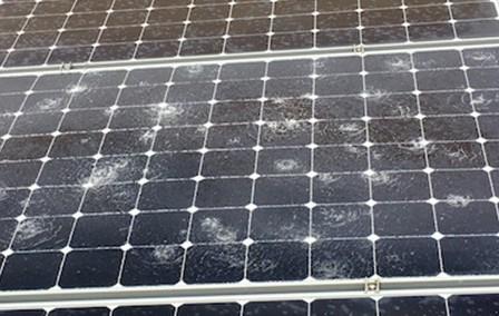 Jég verte olcsó napelem